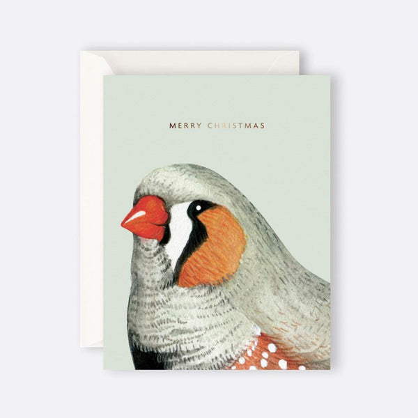 Father Rabbit Stationery | MERRY CHRISTMAS BIRD