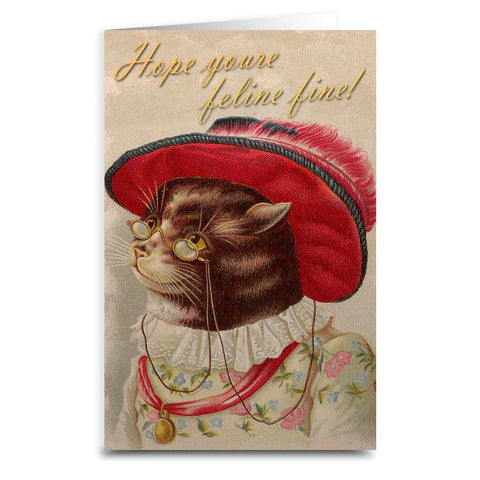 Hope You're Feline Fine Card - Falstaff Trading
