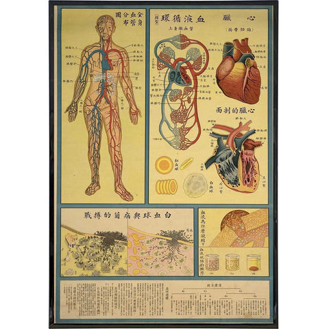 Chinese Cardiological Public Health Print