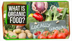 Organic products - The why, what and how