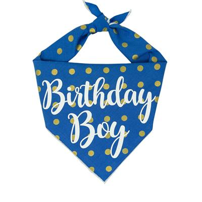 Birthday Boy Blue Polka Dots Tie