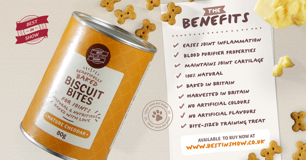 An infographic from Best In Show, indicating the features and benefits of the Mature Cheddar Baked Bites, from their beautifully baked range available at the Best In Show website.