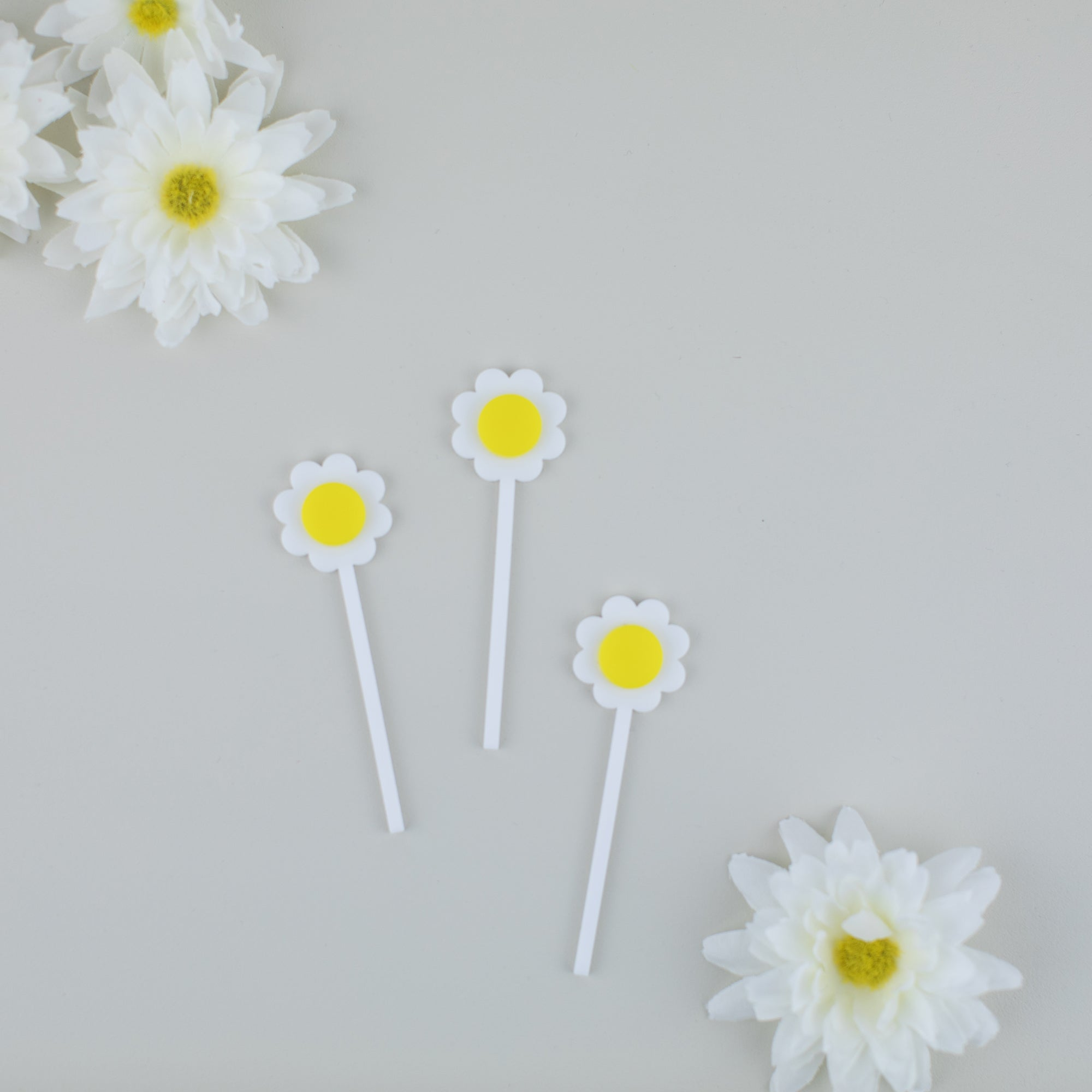 Daisy Cupcake Toppers, Mother's Day Party, Cupcake Toppers Laser Cut, Acrylic, 6 Ct.