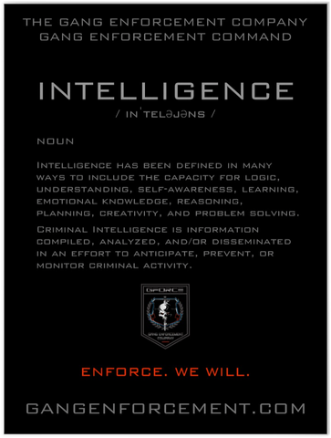 Definition of Intelligence Poster