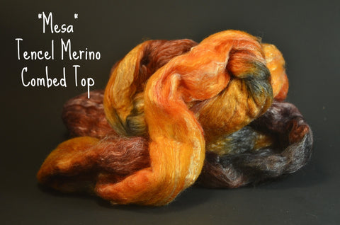 Tencel Merino Combed Top 50/50 blend 2oz. colorway - Mesa $17.00