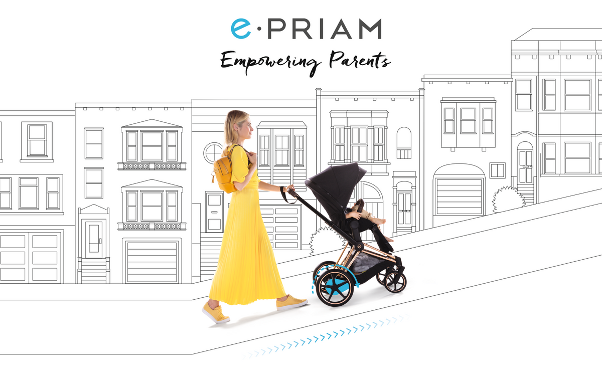 Introducing ePRIAM