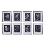 Uttermost Coral On Navy Framed Prints Set/8