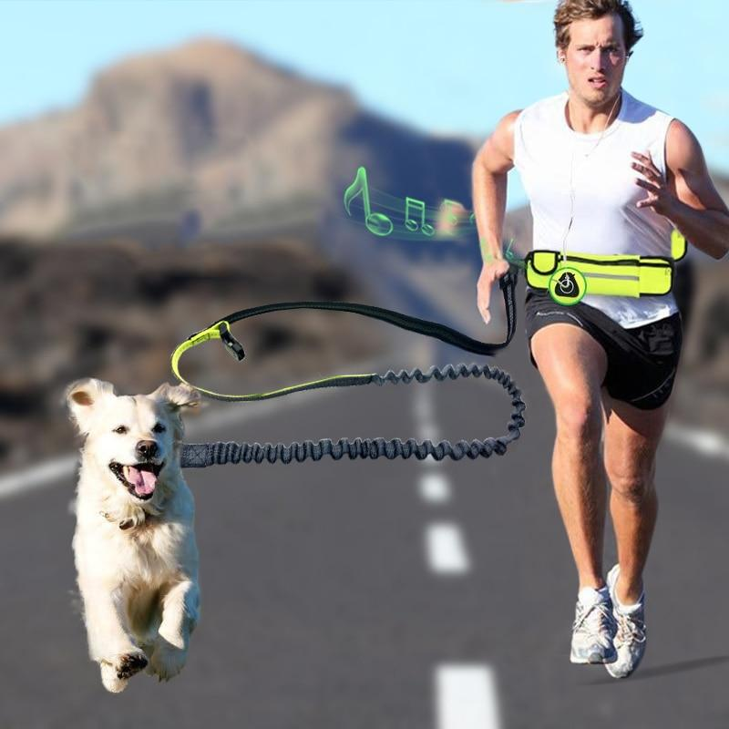 Hands Free Bungee Dog Leash for Running Walking Training Hiking