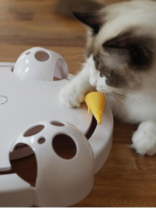 Fully Automatic Kitty Fun Toy Pets DISCOUNT