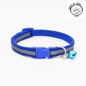 Collier de chien fluorescent