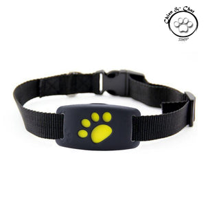 Collier GPS Pet Tracker