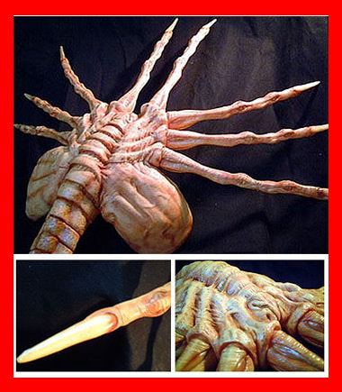 Alien Queen Facehugger Life Size 1/1 vinyl model kit figures - indymodel88