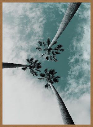 3 Palm Trees Perspective Print