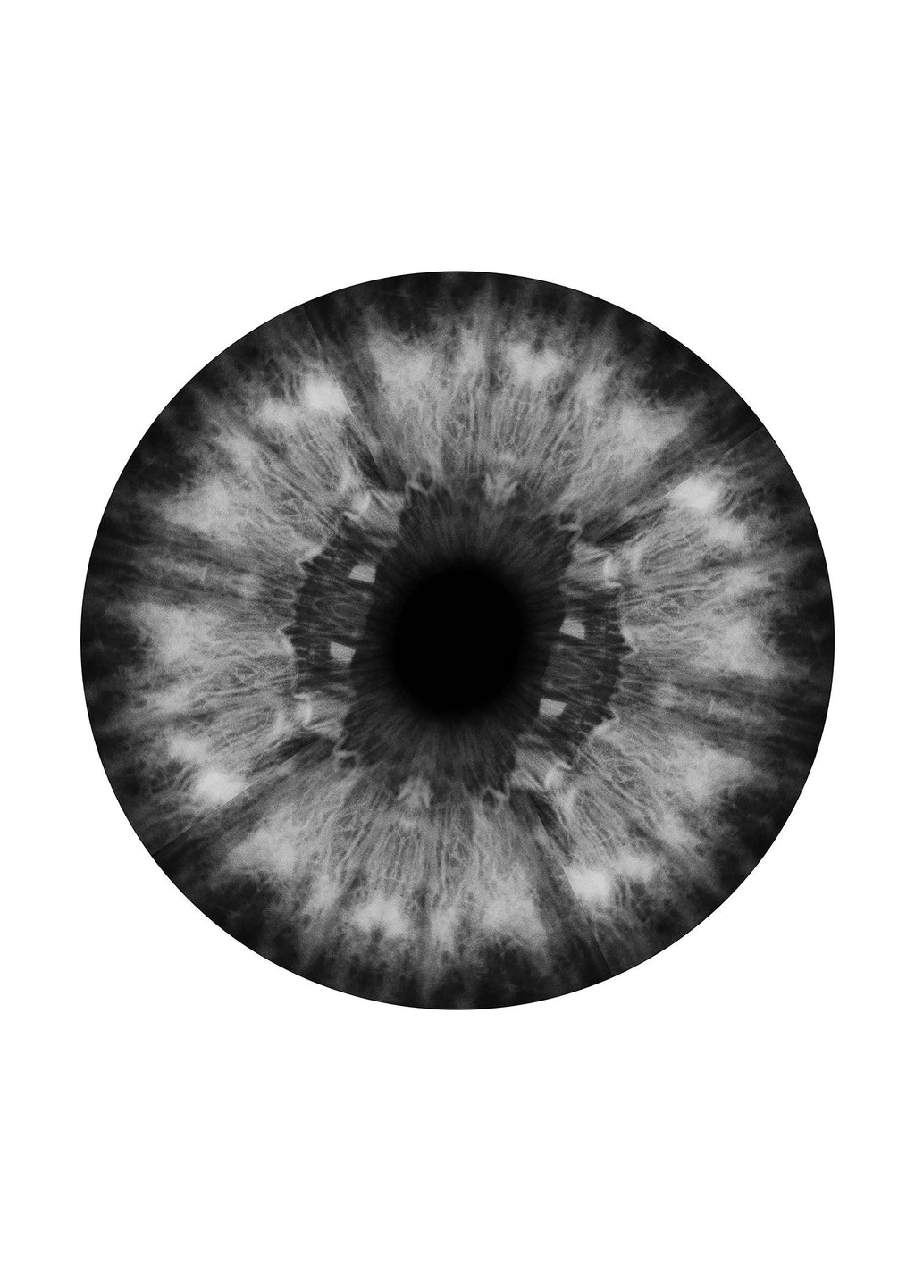 Eyeball Black And White Print