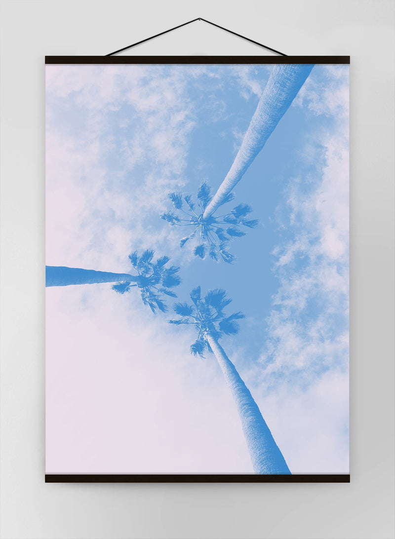 Palm Trees Pink Blend Canvas