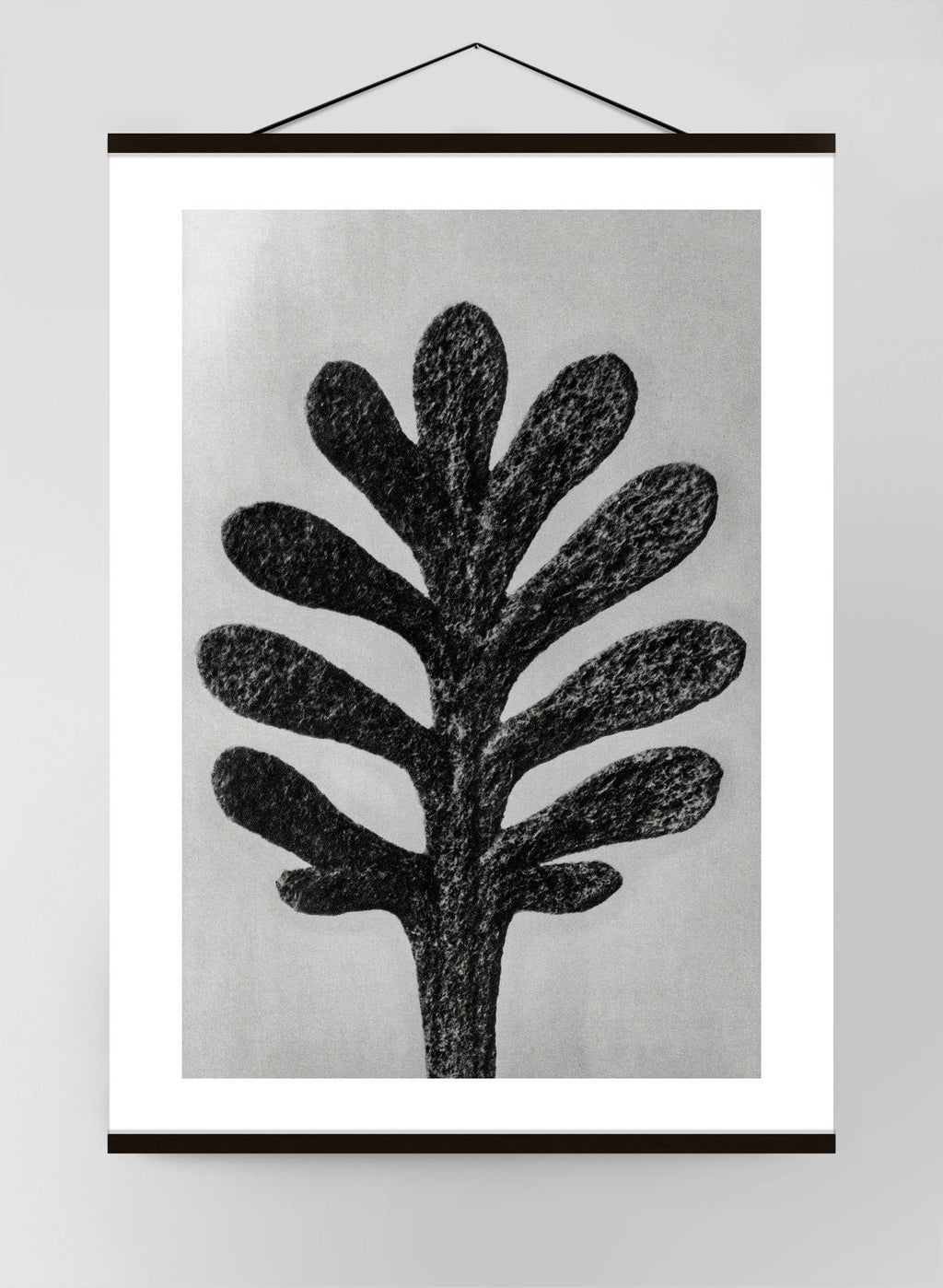 Vintage Botanical Study 1 Black & White Canvas