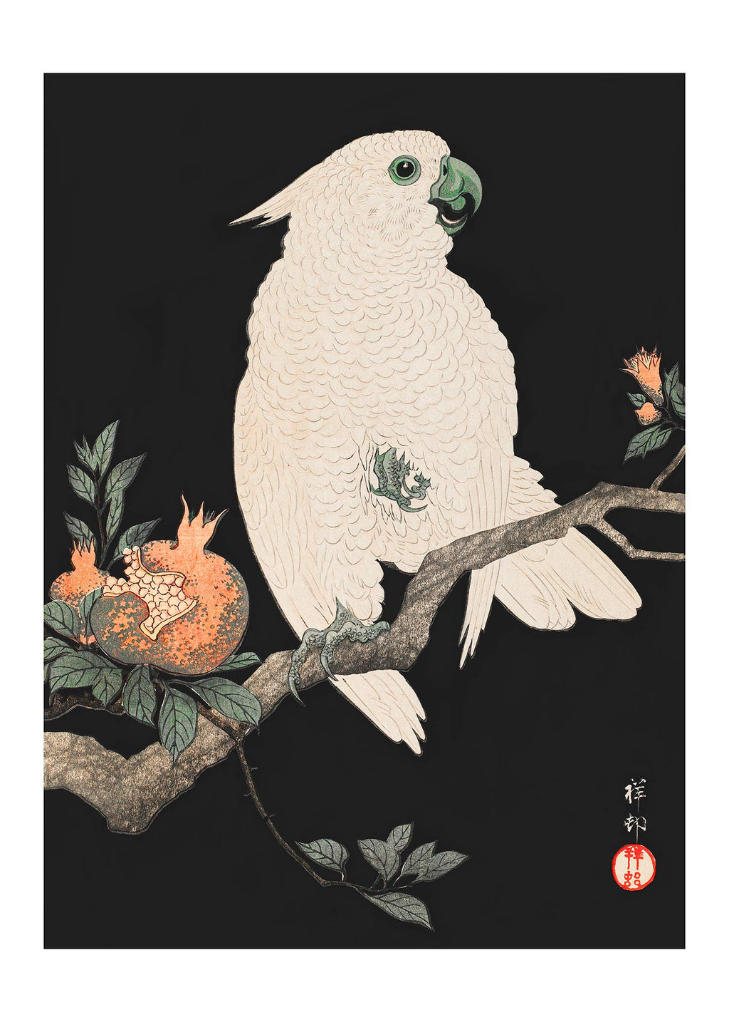 Cockatoo Parrot Antique Japanese Print