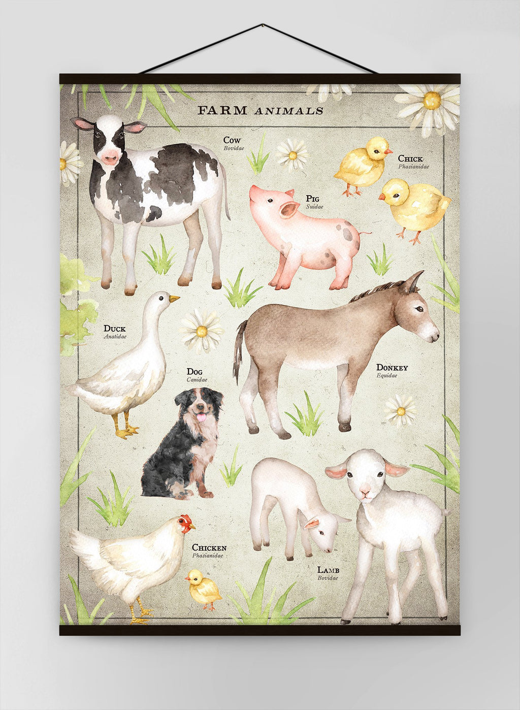 Vintage Style Farmyard Animals Chart Educational Canvas