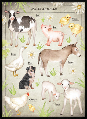 Vintage Style Farmyard Animals Chart Educational Print