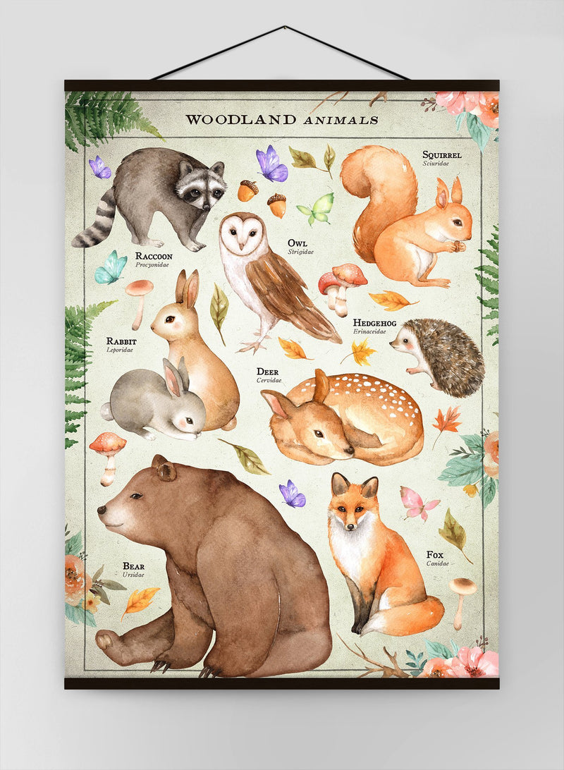 Vintage Style Woodland Animals Chart Educational Canvas