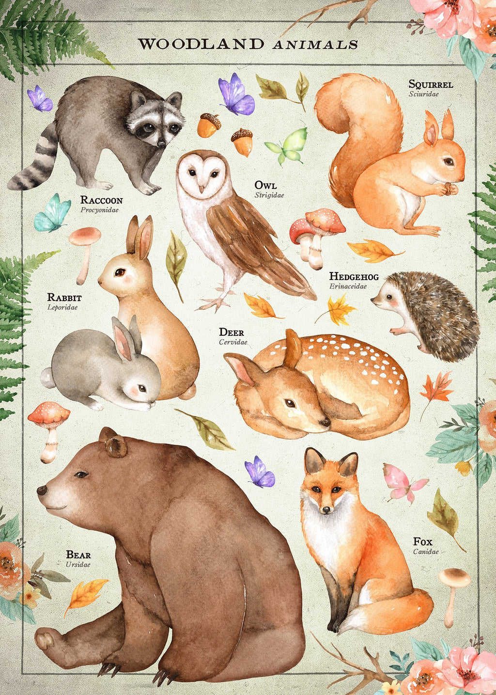 Vintage Style Woodland Animals Chart Educational Print