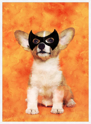 Super Puppy! Little Heroes Animal Print