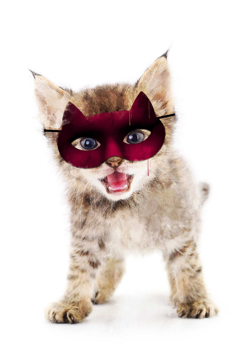 Super Kitten! Little Heroes Animal Print