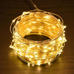 Copper String Lights 66 ft with Remote