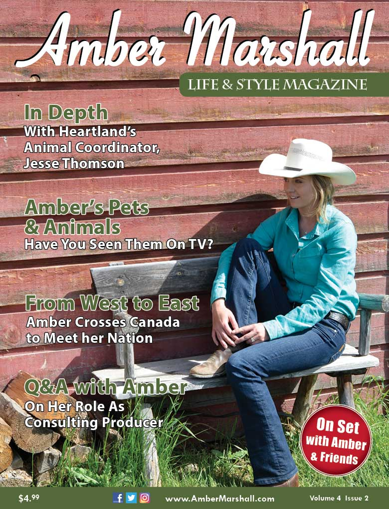 Life and Style Magazine, Volume 4, Issue 2