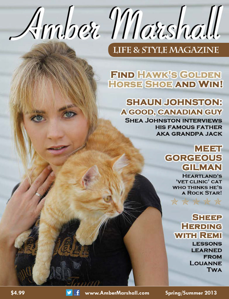Life and Style Magazine, Volume 1, Issue 2
