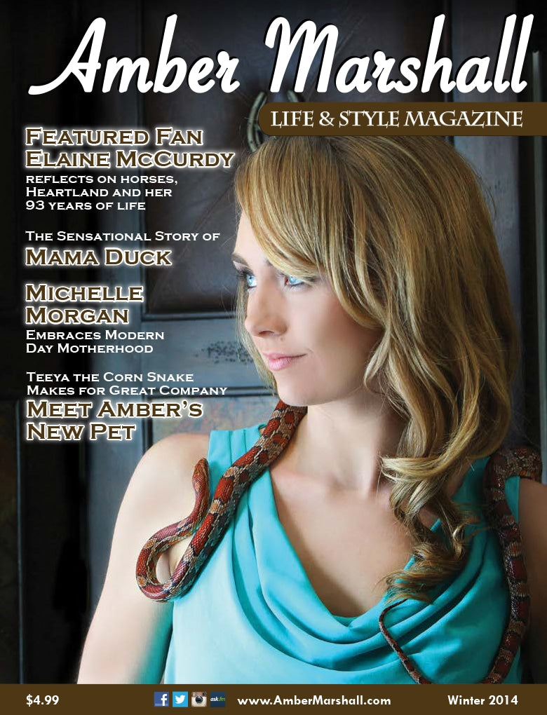 Life and Style Magazine, Volume 2, Issue 1