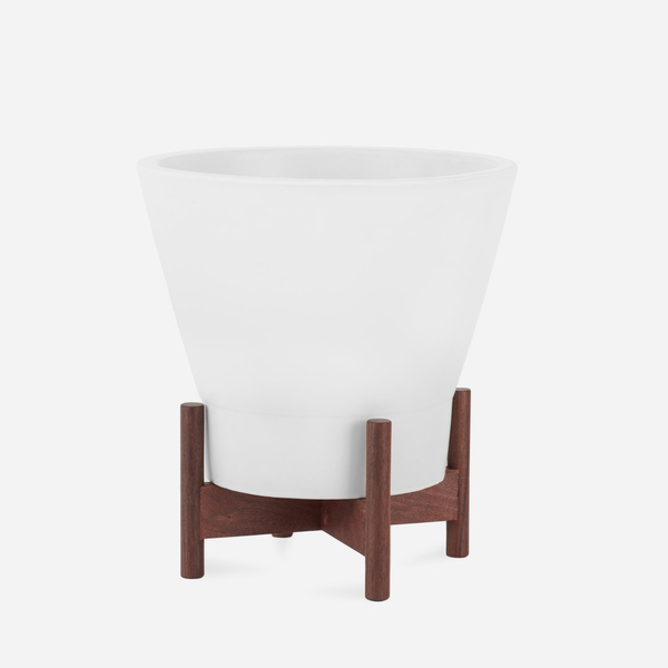 Case Study Ceramics - Small Jewel, White with Walnut Stand