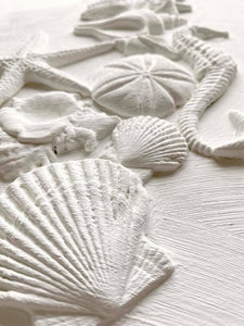 Seashell Mould