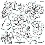 NEW: Grape Stamp PREORDER