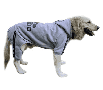 Adi Dog Sweatshirt