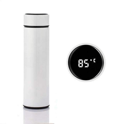 Temperature Display Water Bottle