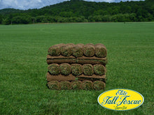Load image into Gallery viewer, Elite Tall Fescue Sod