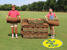 Load image into Gallery viewer, Zenith Zoysia Sod