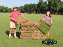 Load image into Gallery viewer, Zeon Zoysia Sod