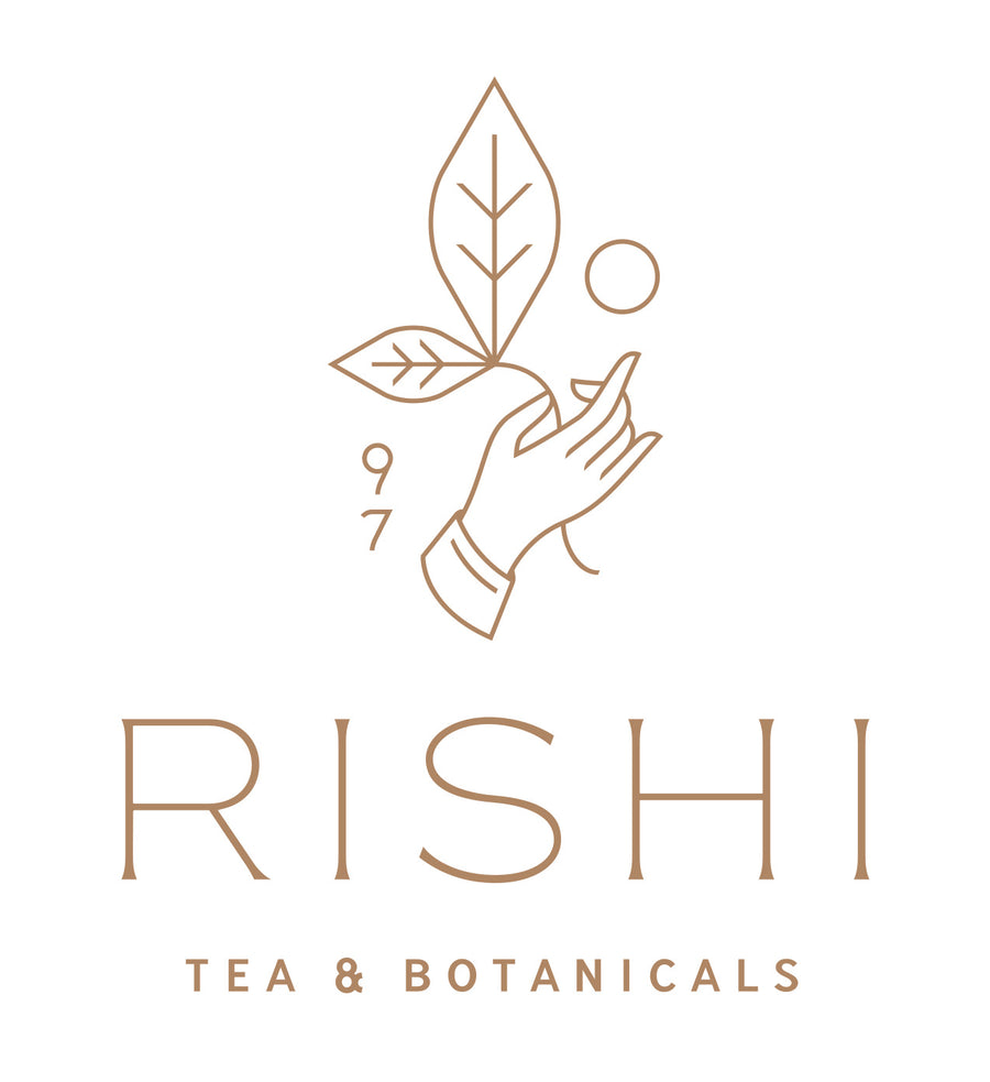 Rishi Simple Brew 400mL Teapot