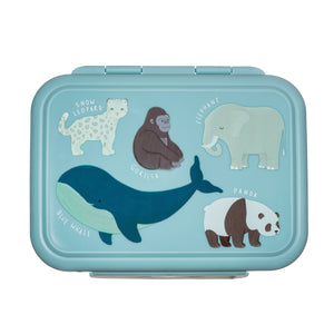 Lunchbox ANIMAL