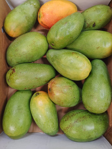 Jamaican East Indian Mangoes (USA Only) (Limit One Case)