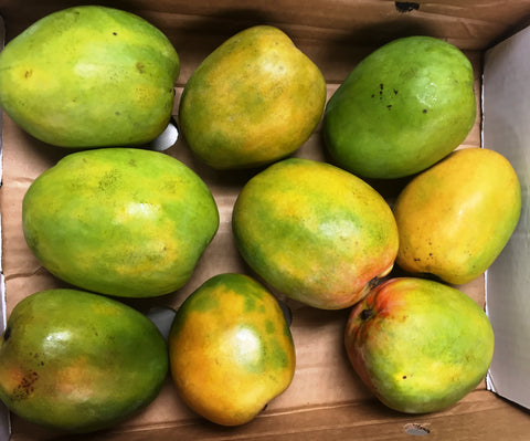 Jamaican Graham Mangoes (USA Only)