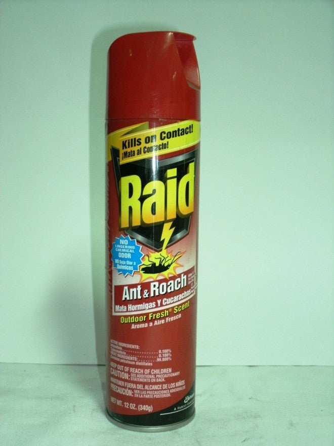 RAID ANT & ROACH OUTDOOR FRESH SCENT 496 G