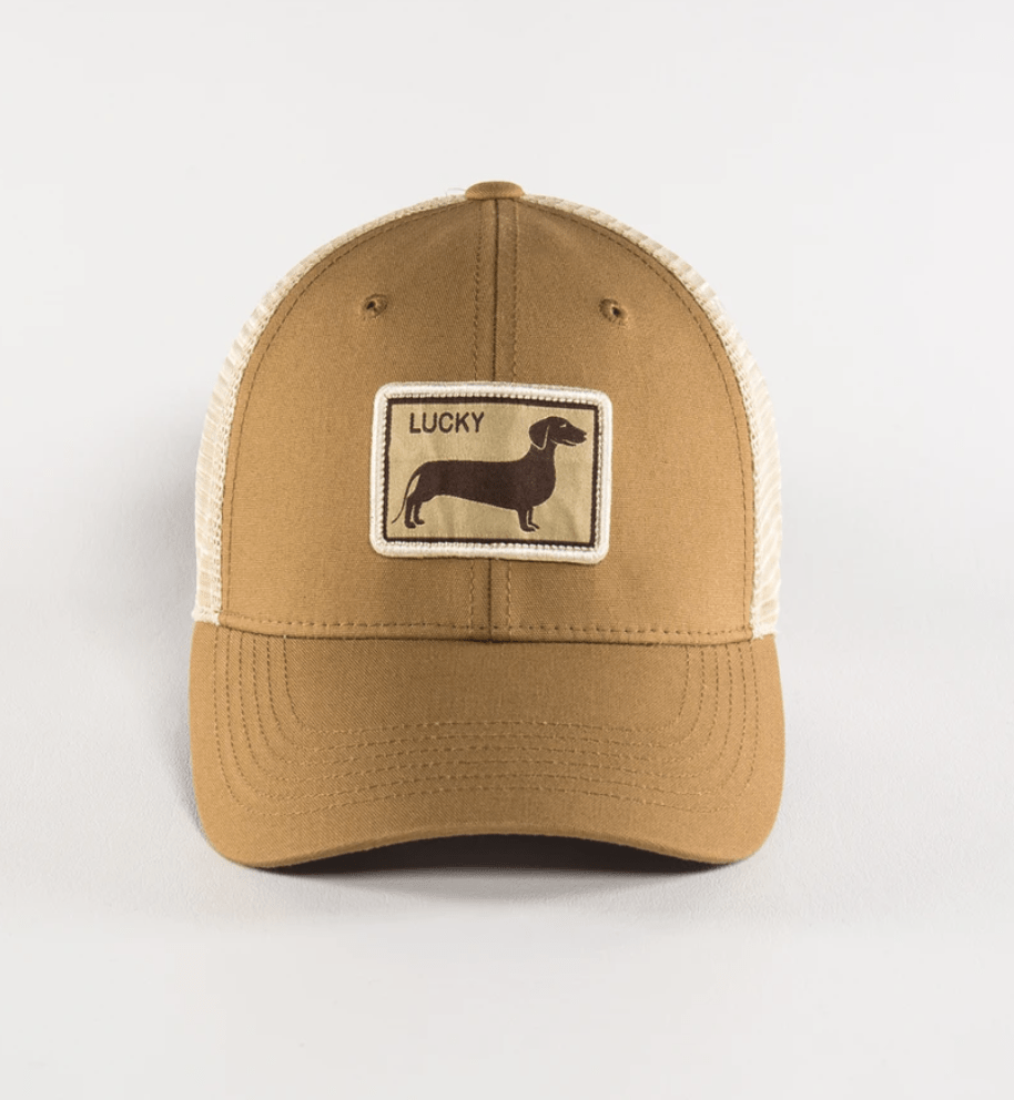 Black Clover Baseball Caps Weiner Dog - Adjustable equestrian team apparel online tack store mobile tack store custom farm apparel custom show stable clothing equestrian lifestyle horse show clothing riding clothes horses equestrian tack store