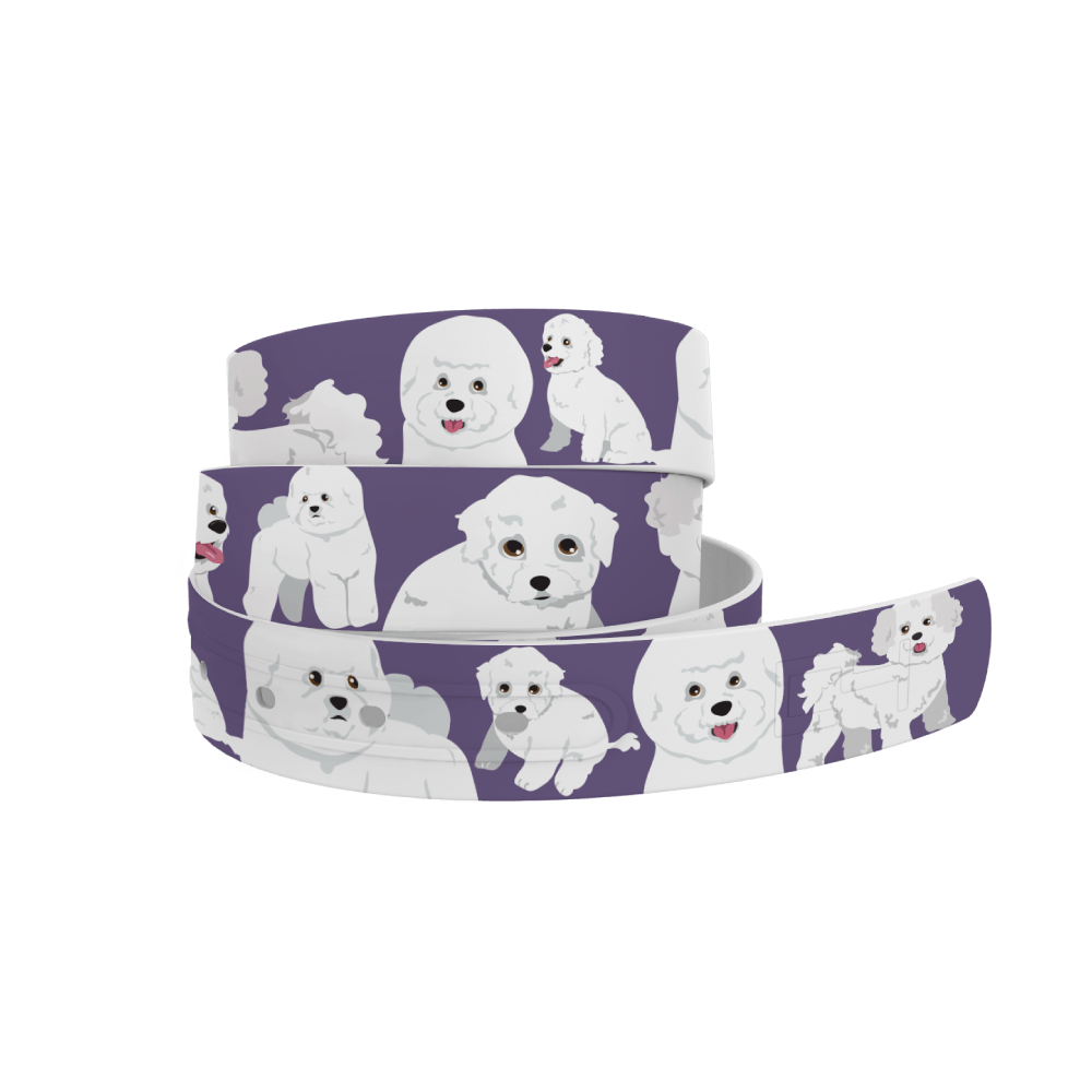 C4 Belts Belt Bichon Belt - C4 equestrian team apparel online tack store mobile tack store custom farm apparel custom show stable clothing equestrian lifestyle horse show clothing riding clothes horses equestrian tack store