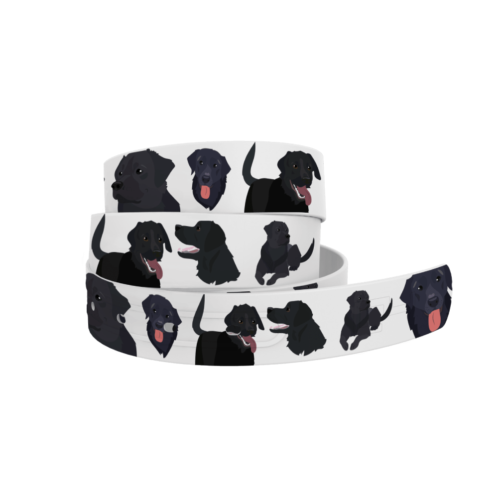 C4 Belts Belt Black Lab  Belt by C4 equestrian team apparel online tack store mobile tack store custom farm apparel custom show stable clothing equestrian lifestyle horse show clothing riding clothes horses equestrian tack store