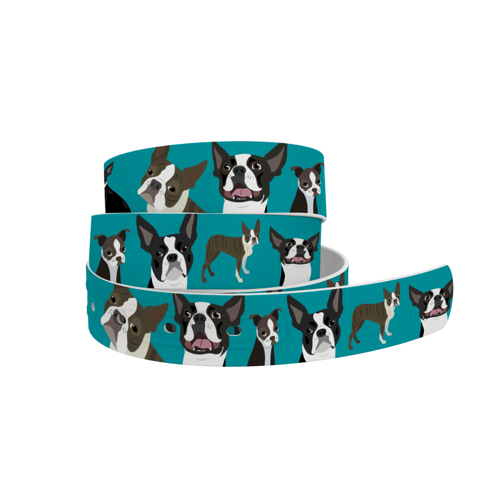 C4 Belts Belt Boston Terrier Belt by C4 equestrian team apparel online tack store mobile tack store custom farm apparel custom show stable clothing equestrian lifestyle horse show clothing riding clothes horses equestrian tack store