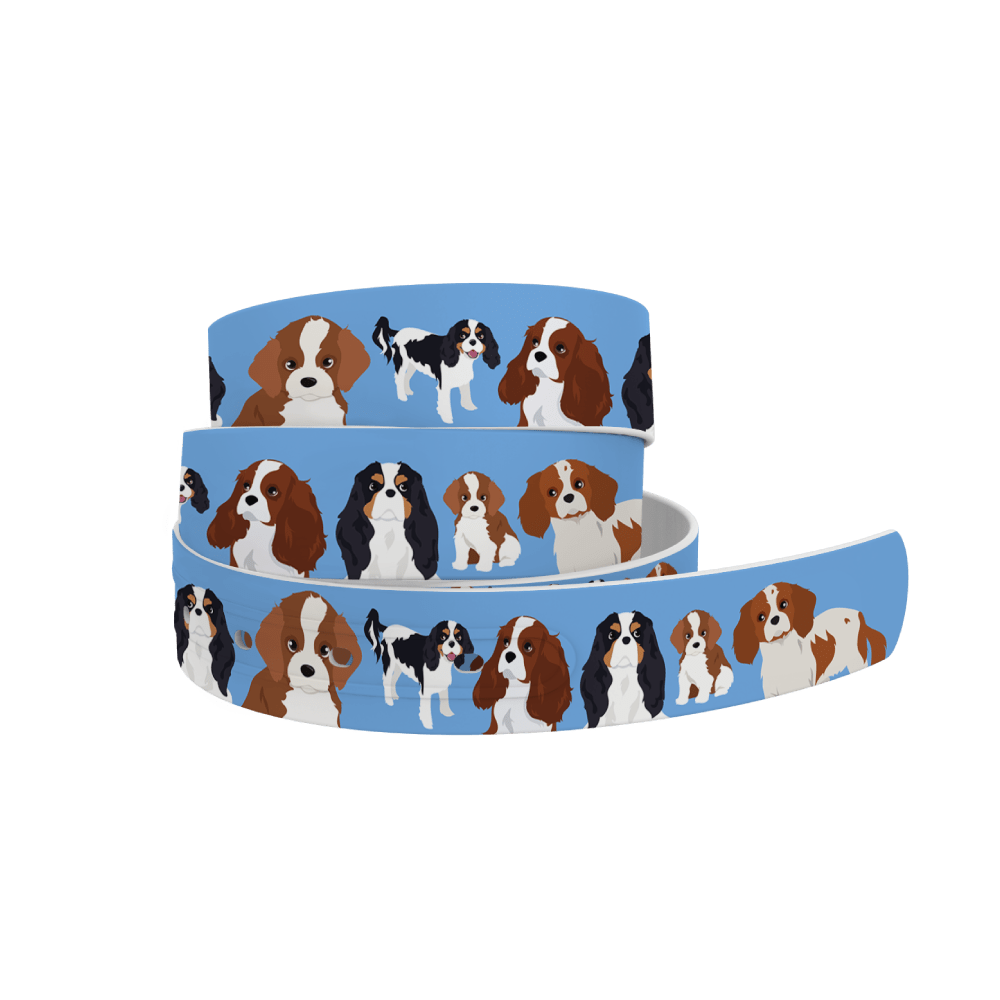 C4 Belts Belt Cavalier King Charles Spaniel Belt- C4 equestrian team apparel online tack store mobile tack store custom farm apparel custom show stable clothing equestrian lifestyle horse show clothing riding clothes horses equestrian tack store