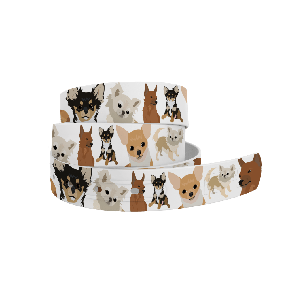 C4 Belts Belt Chihuahua Belt C4 equestrian team apparel online tack store mobile tack store custom farm apparel custom show stable clothing equestrian lifestyle horse show clothing riding clothes horses equestrian tack store
